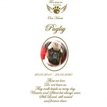 Pet Memorial Personalised Candle Classic
